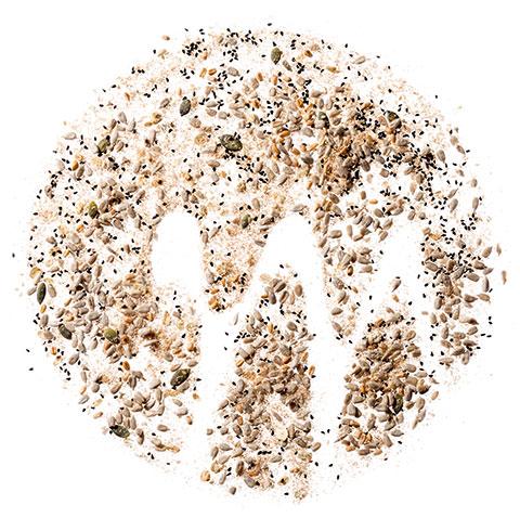 logo moretti panificio con semi